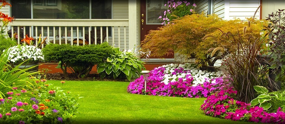 Land scaping for Garden scaping